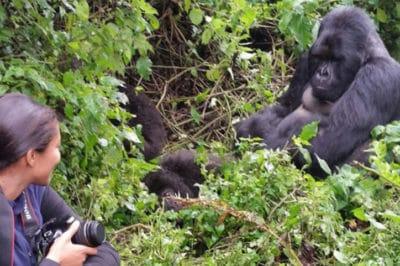 Adventurer Uganda & Rwanda Gorilla Trek