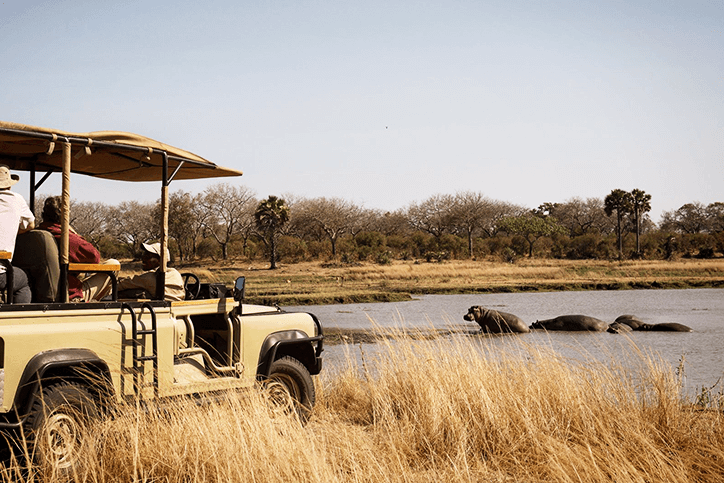 Affordable Safari Packages