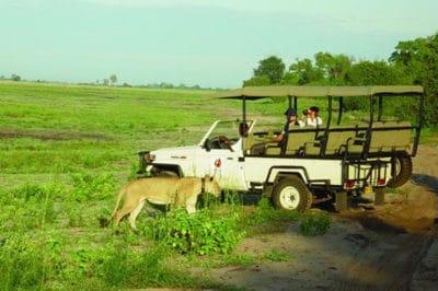 Botswana's Chobe & Delta