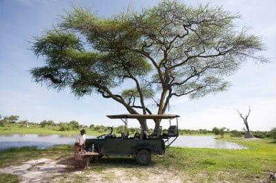 Botswana's Delta, Linyanti & Savute