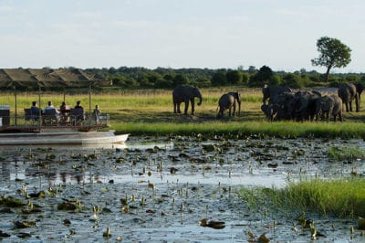 Botswana's Delta, Savute & Chobe