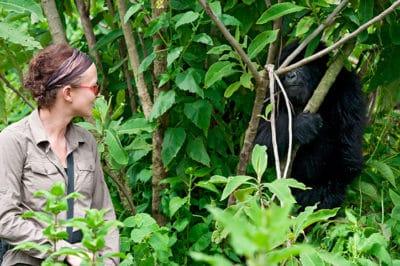 Bwindi Fly-in Gorilla Trek