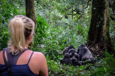 East Africa's Kenya Safari & Uganda Gorillas