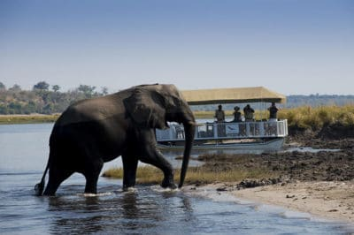 East Africa's Mara, Serengeti & Selous