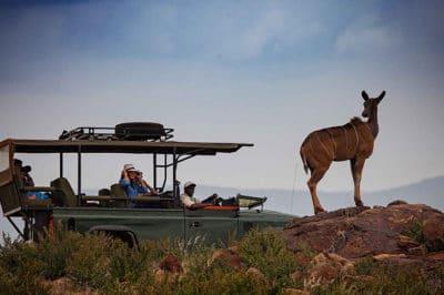 Family Kruger & Victoria Falls