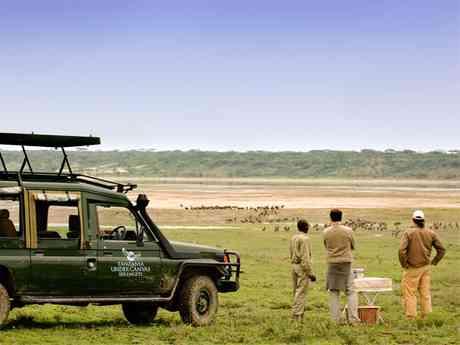Family Tanzania Fly-In Manyara, Migration & Crater