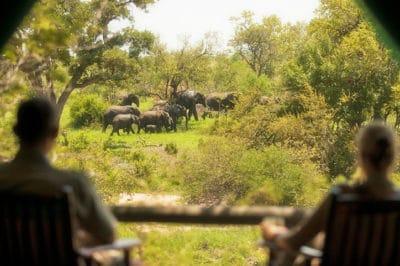 Honeymoon Kruger & Seychelles' Mahe