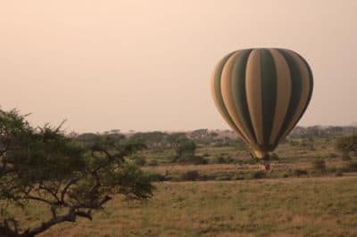 Kenya's Masai Mara Park & Conservancy