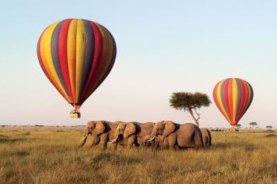 Kenya's Samburu & Mara