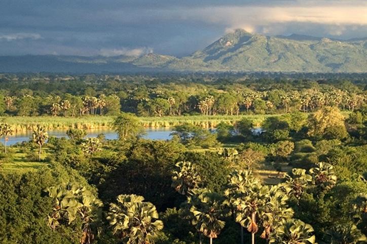 Malawi's Liwonde Safari & Likomo Island