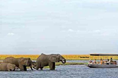 Okavango Delta, Chobe River & Victoria Falls