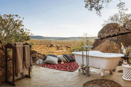 Private & Exclusive Safaris