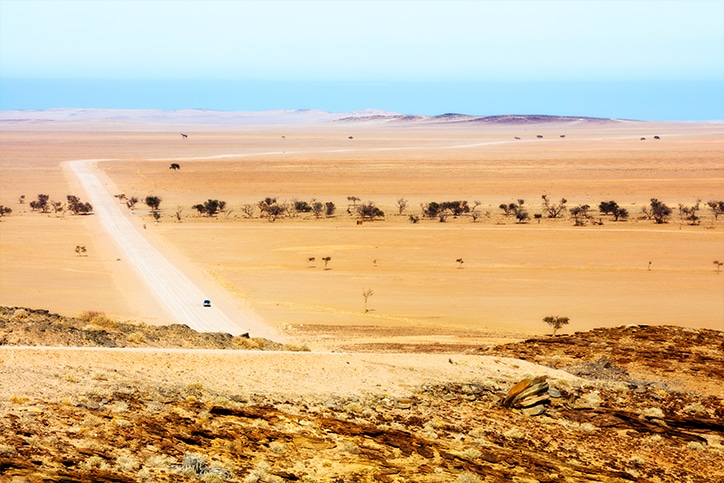 Private Guided Namibia Road Safari