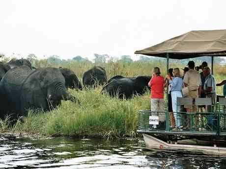 Private Guided Vic Falls & Botswana