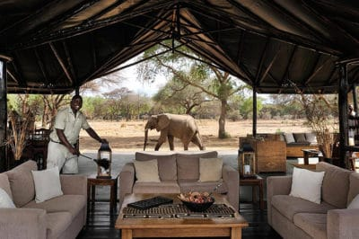Private Guided Zimbabwe & Zambia