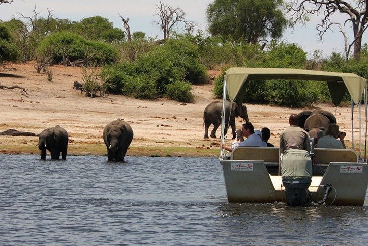 Romantic Botswana's Delta, Chief's Island