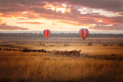 Romantic Fly-In Manyara, Crater & Migration