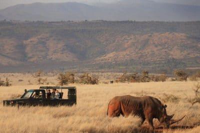 Romantic Kruger, Zimbabwe & Mozambique