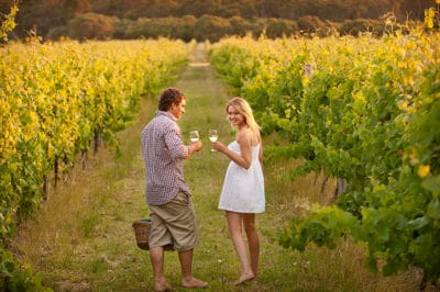 Romantic South Africa's Winelands
