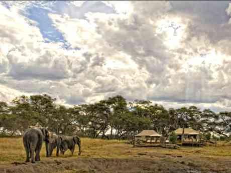 Somalisa Expeditions