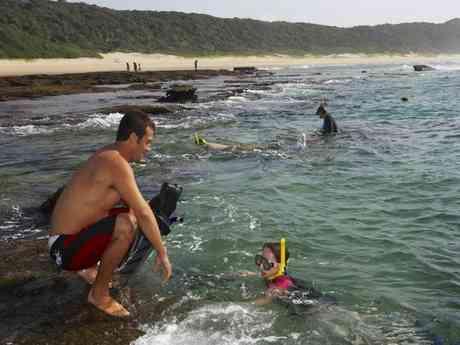South Africa's Cape, Winelands, Safari & Beach