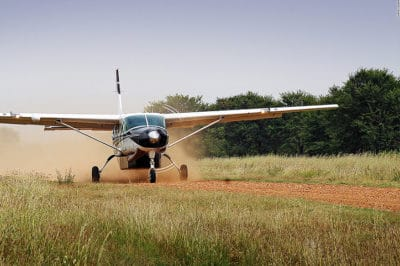 Tanzania Fly-In Tarangire, Highlands & Migration