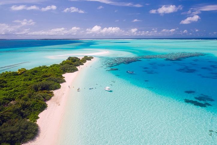 Tanzania's Selous & Mozambique's Quilalea Island
