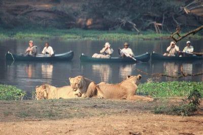 Zimbabwe's Matobos, Hwange, Zambezi & Falls
